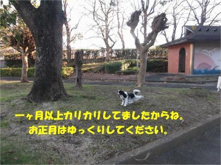 06_convert_20161226175525.jpg