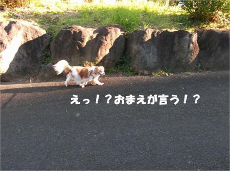 07_convert_20161226175535.jpg