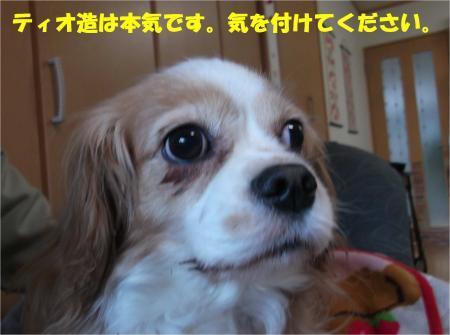 08_convert_20170126185636.jpg
