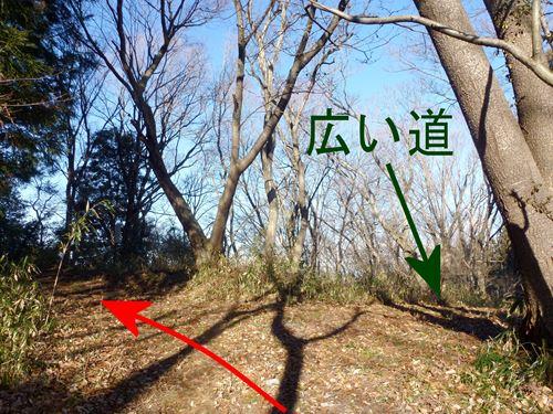 shinzan_m3.jpg