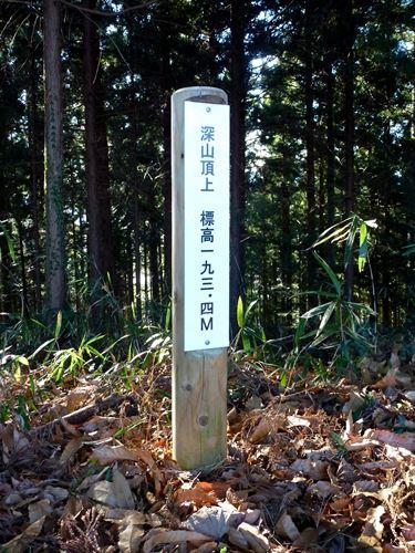 shinzan_m6.jpg