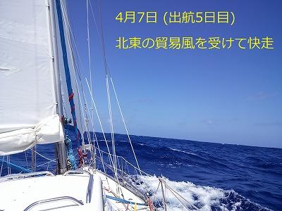 18 DSC_2081 0407-12