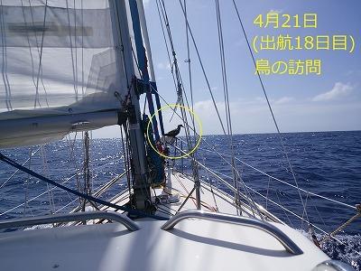 66 DSC_2737