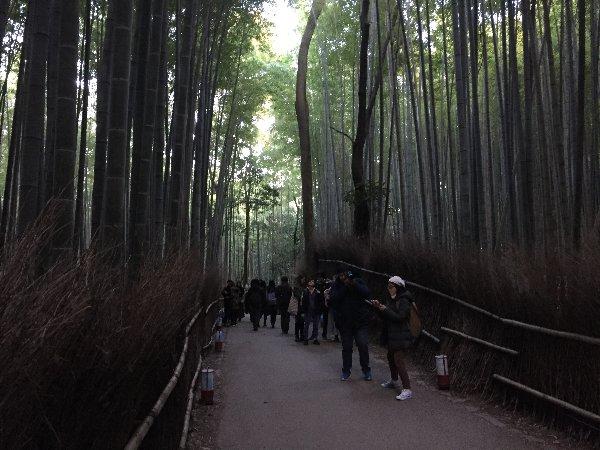 chikurin-arashiyama-009.jpg