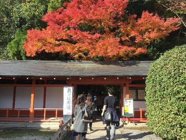 kuramatera-kyoto-122.jpg