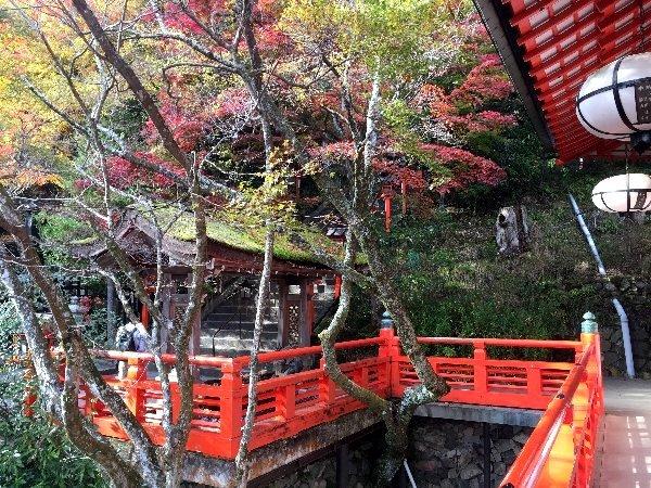 kuramatera-kyoto-171.jpg