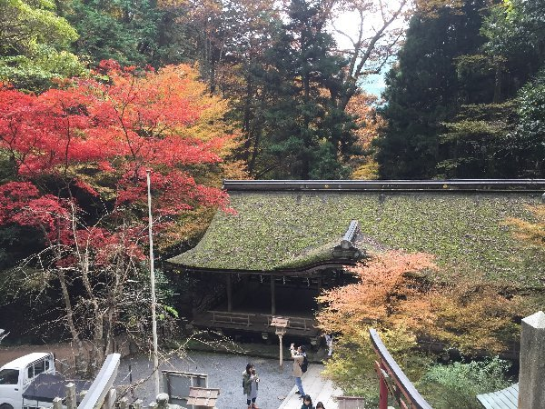 kuramatera-kyoto-223.jpg