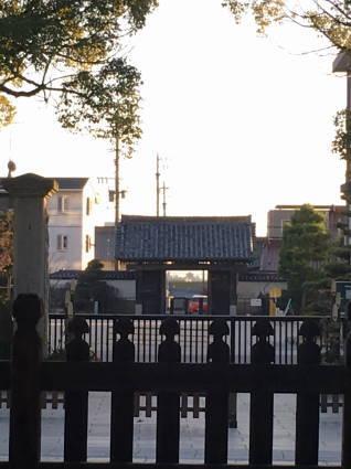 大樹寺017