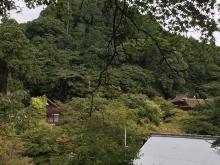 談山神社10月