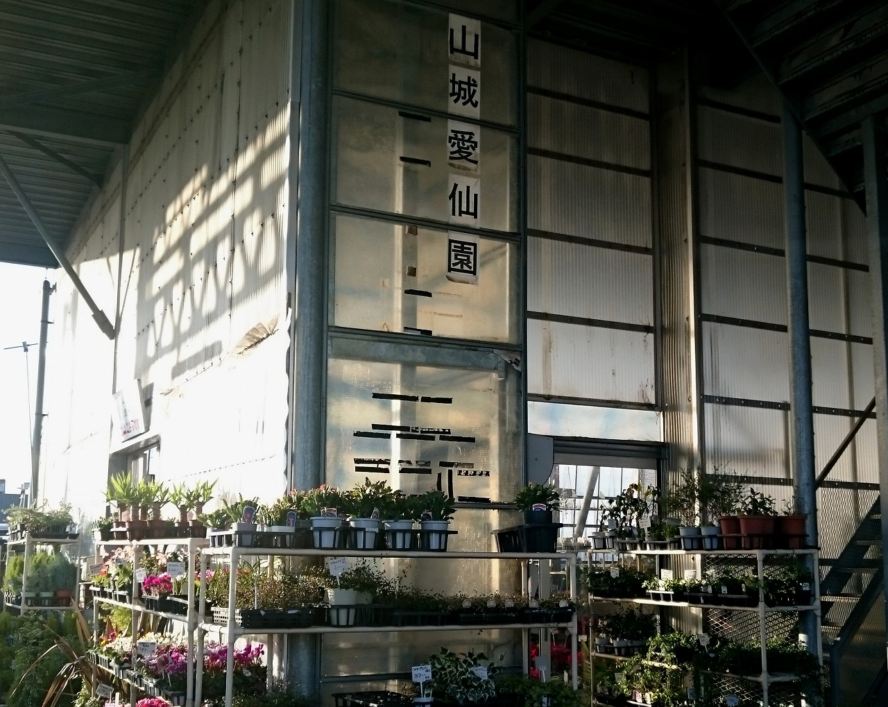 20161203-YamashiroAisenen-X01.jpg