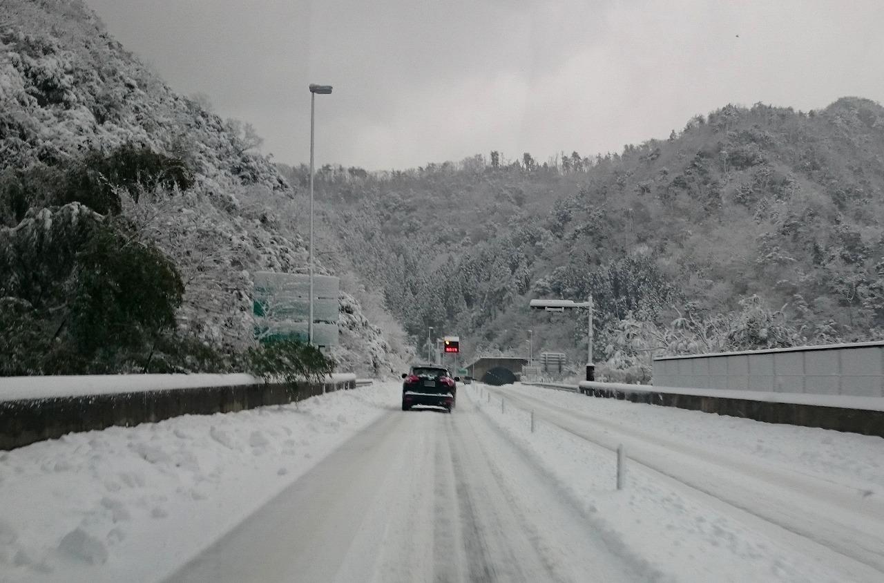20170123-Snow-X01.jpg