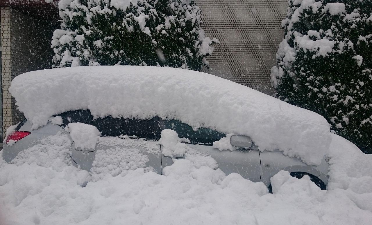 20170123-Snow-X06.jpg