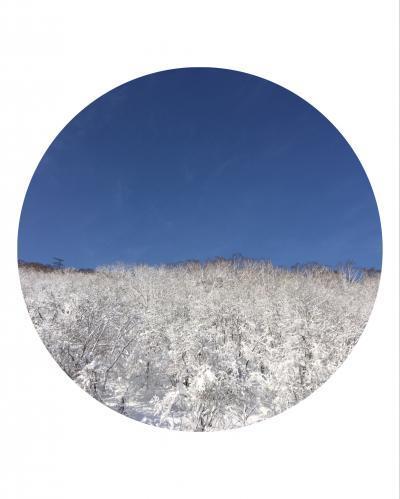 2017北海道②