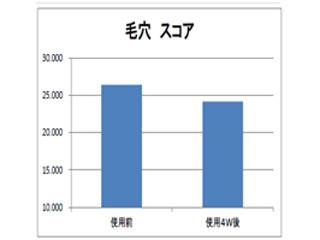 毛穴グラフ