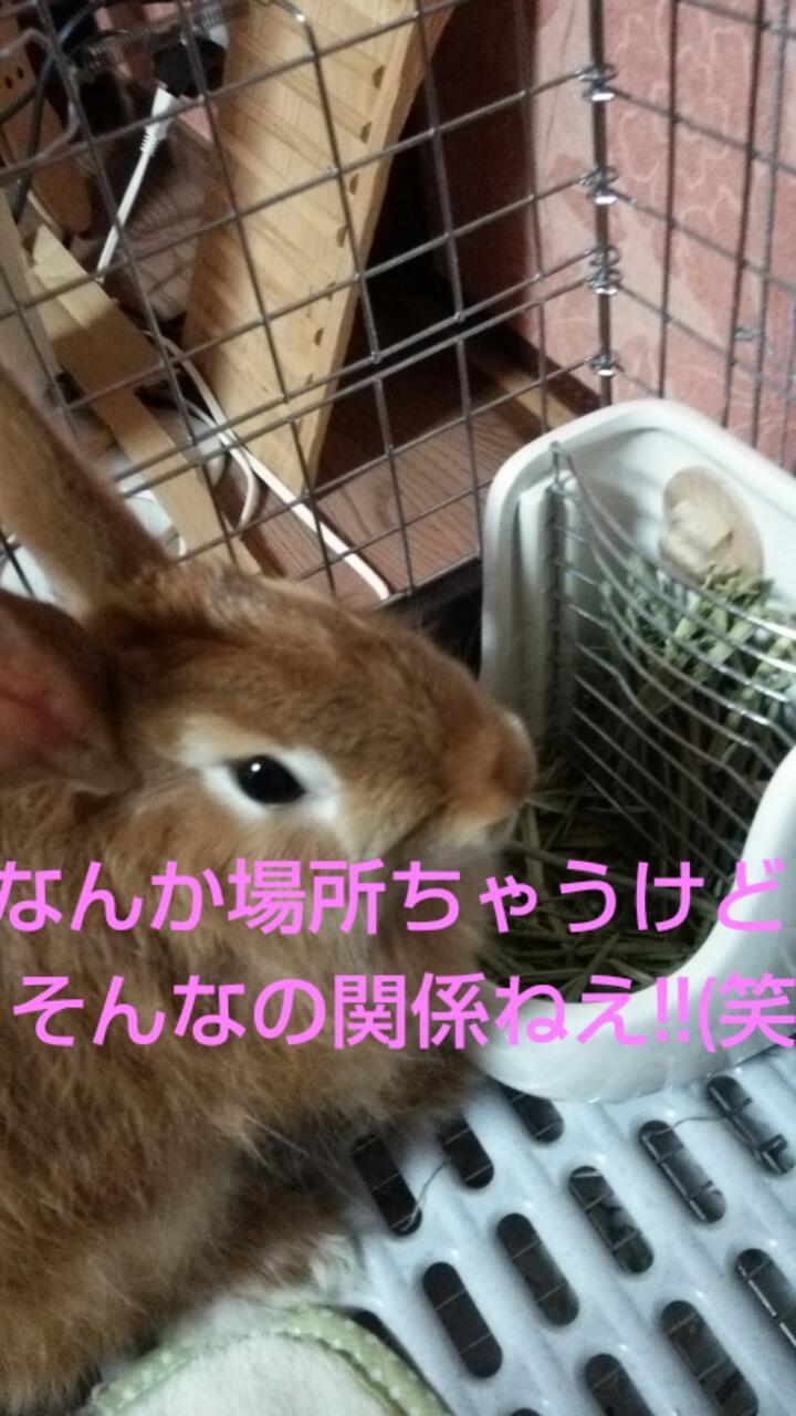 20161206_001405.jpg