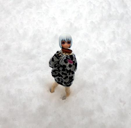 28_11_26 おとといの初雪 3