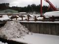 1/23雪②