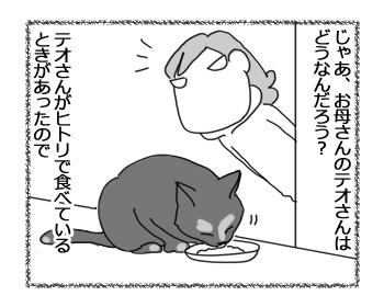 09022017_cat2.jpg