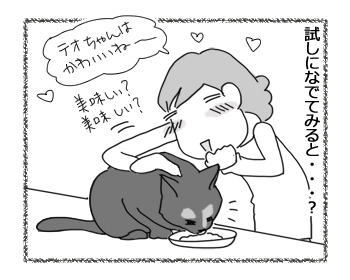 09022017_cat3.jpg
