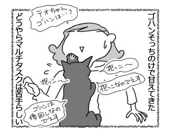 09022017_cat4.jpg