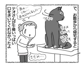 10022017_cat4.jpg