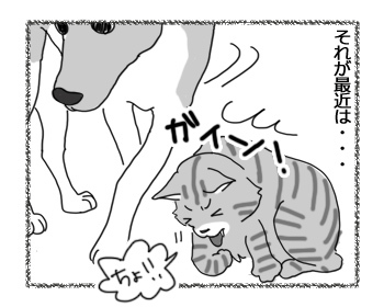 18012017_cat2.jpg