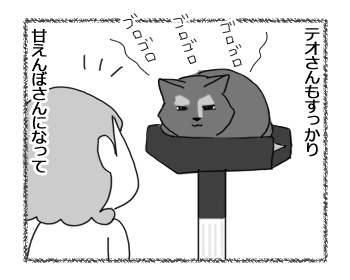 23012017_cat1.jpg