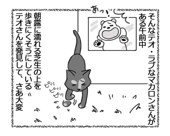 30012017_cat3.jpg