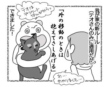 30012017_cat4.jpg