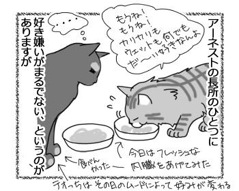31012017_cat1.jpg