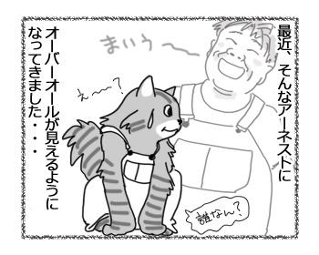 31012017_cat4.jpg