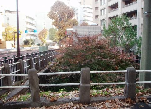 P101035渋谷川源流部