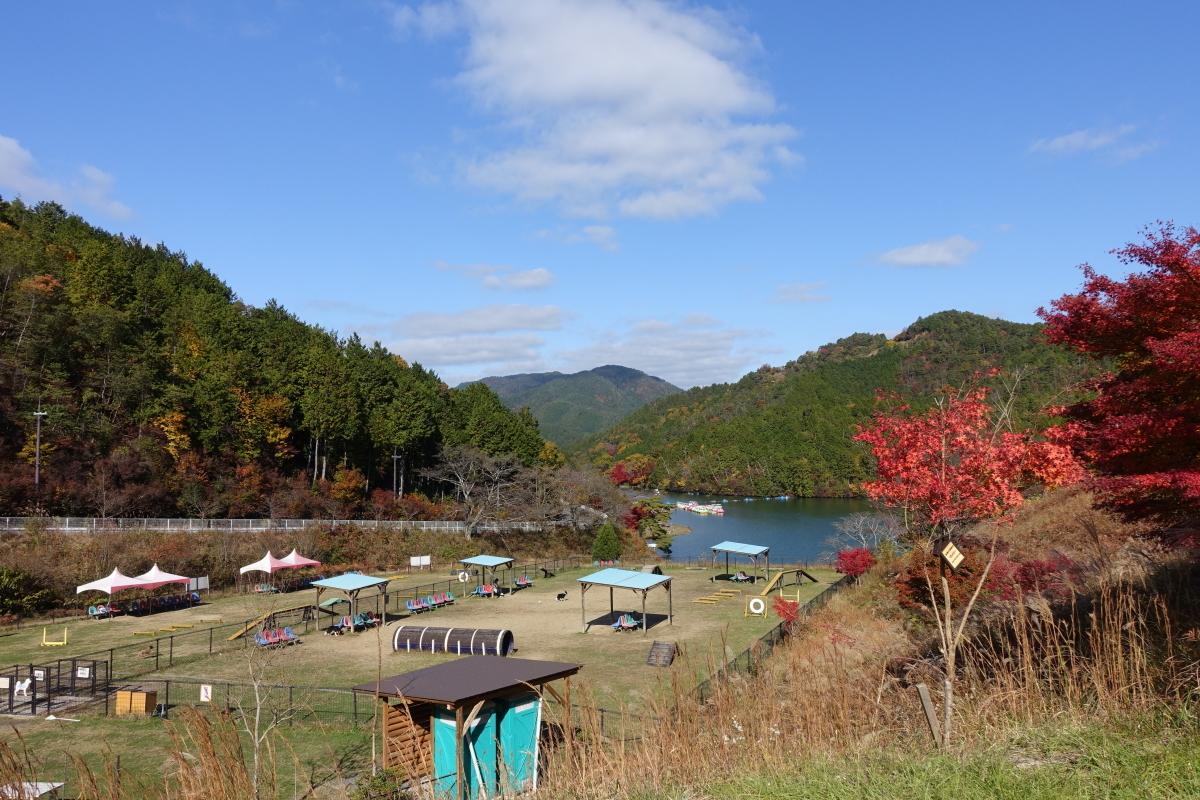 嵐山高雄12