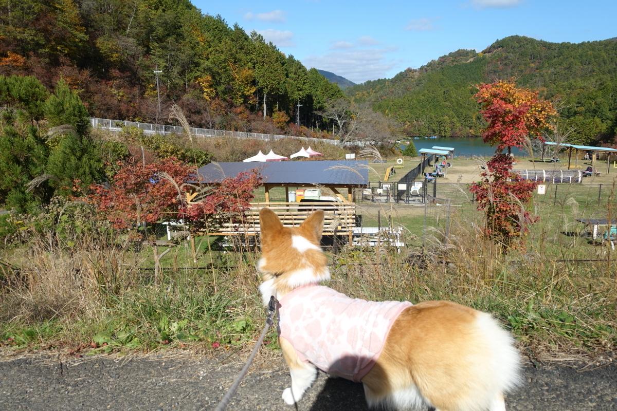 嵐山高雄13