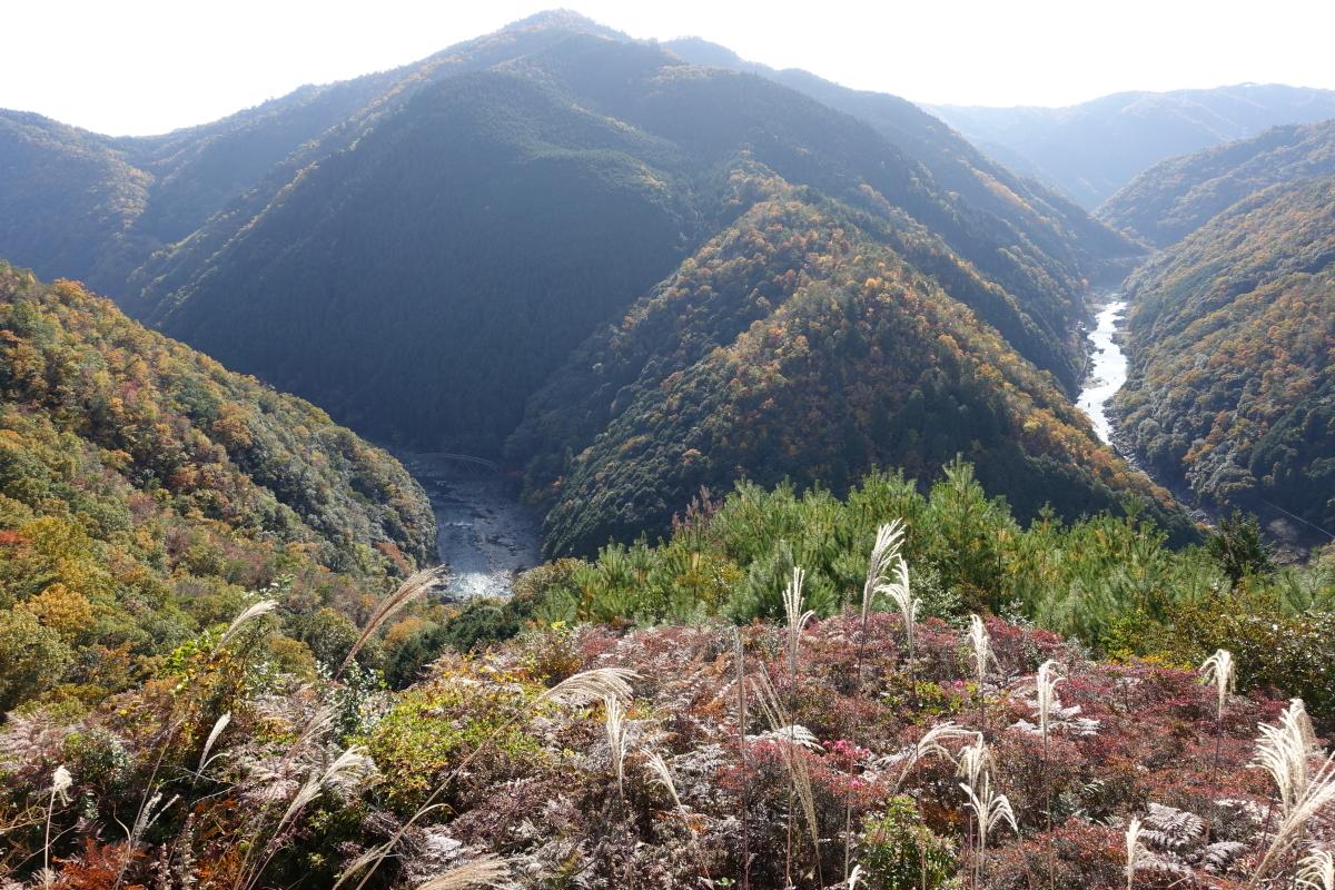 嵐山高雄20