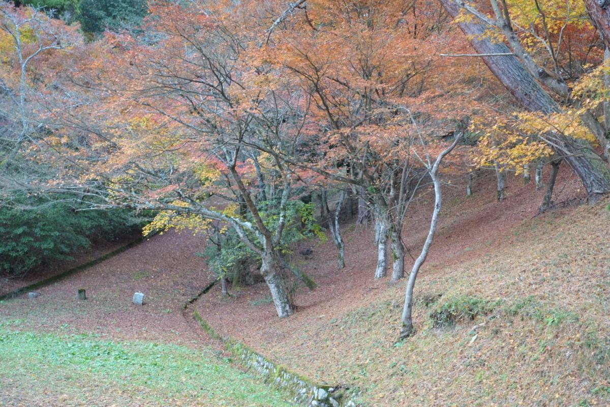 三池公園9