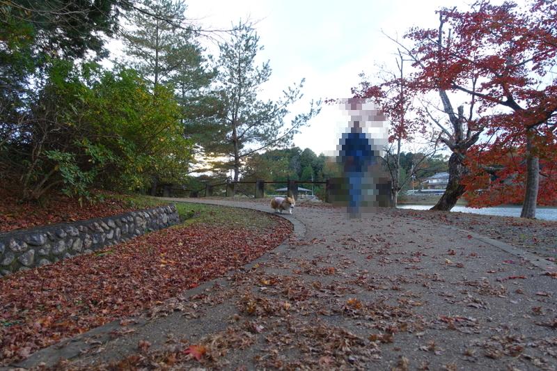 三池公園5
