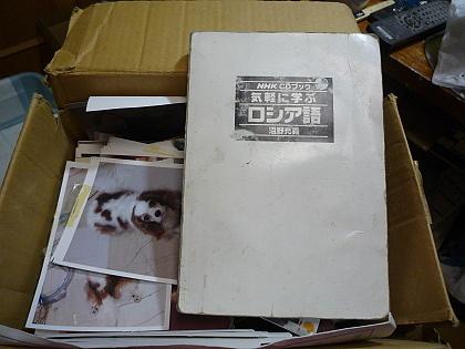 P1030983 - コピー
