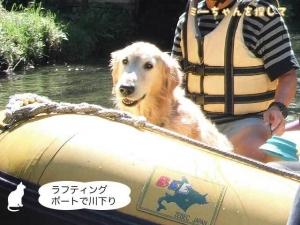 ラフティングボートで川下り