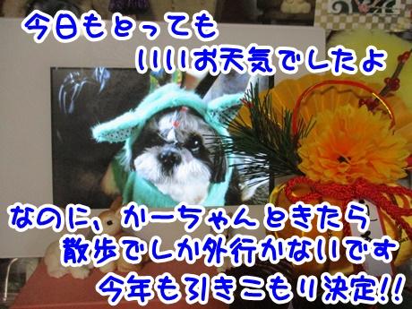 0103-11_2017010319421308c.jpg