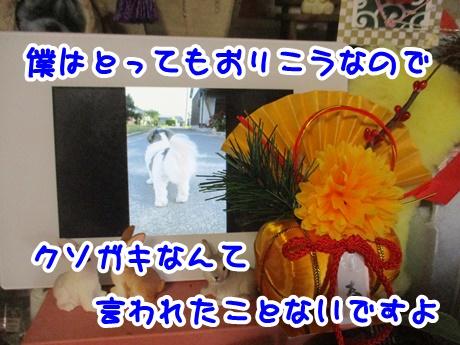 0105-10_2017010517503045b.jpg
