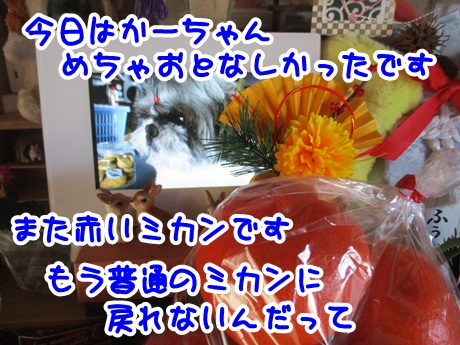 0106-08_20170106191155389.jpg