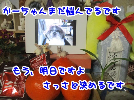 0108-08_2017010816265045c.jpg