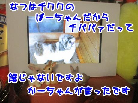 0112-08_201701121841477e8.jpg