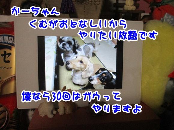 0116-10_2017011619002602d.jpg