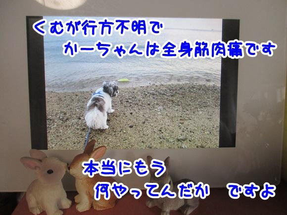 0117-13_20170117165443acf.jpg