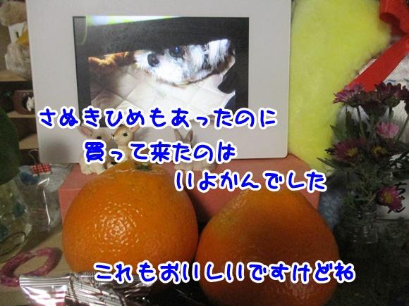 0120-06_20170120192601757.jpg
