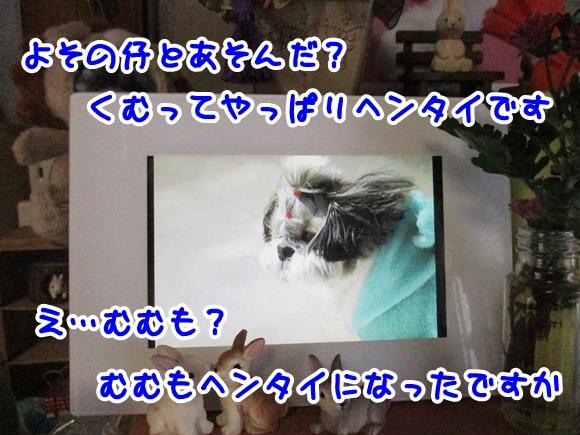 0125-11_20170125183847931.jpg