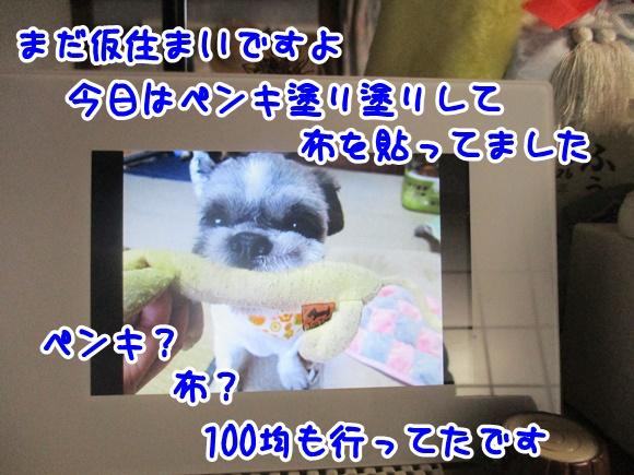 0202-10_20170202200615d97.jpg