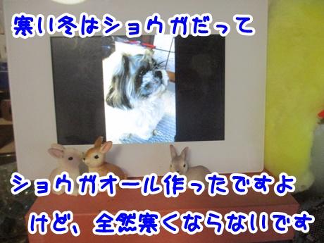1205-05_20161205165304338.jpg
